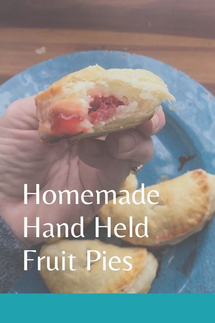 Homemade hand held Fruit pies made with simple ingredients and small enough to carry with you anywhere. #fruitpie #handpie #homemadepiecrust