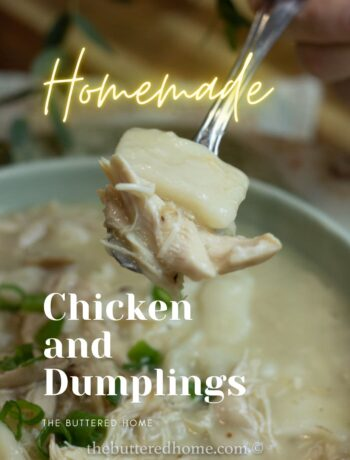 a spoonful of chicken and dumplings